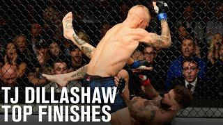 Top Finishes: TJ Dillashaw