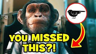 51 SECRET SPARROWS & Things You Missed In UMBRELLA ACADEMY Season 2