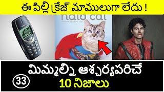 Top 10 Unknown Facts in Telugu | Interesting and Amazing Facts | Part 33 | Minute Stuff