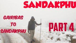 Sandakphu Travel Guide | Trekking | Trip | Top 10 Snowfall Place | Hindi (Part 4)