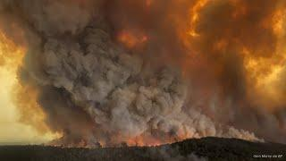 Australia Wildfires Explained | The huge size and why the fires are happening