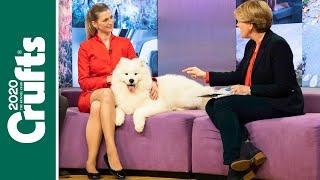 Our favourite moments from Crufts on Channel 4!