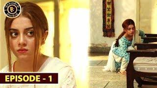 Mera Dil Mera Dushman | Episode 1 | Alizeh Shah & Noman Sami | Top Pakistani Drama