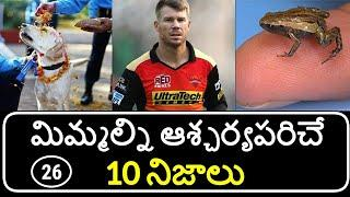 Top 10 Unknown Facts in Telugu | Interesting and Amazing Facts | Part 26 | Minute Stuff