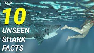 Top 10 Amazing Unseen Shark Facts | Shark Documentary #JungleMungle #SharkFacts #SharkDocumentary