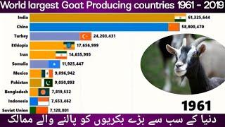 World largest Goat Producing countries 1961 - 2019 || Technical Point Information ||