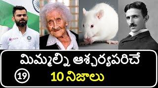 Top 10 Unknown Facts in Telugu | Interesting and Amazing Facts | Part 19 | Minute Stuff