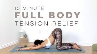 Yoga Full Body Stretch | 10 Minute Yoga | Yoga With Bird