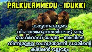 PALKULAMEDU | കാട്ടാനകളുടെ  വിഹാരകേന്ദ്രം | MUST VISIT PLACE | TRAVEL WITH AALOK | Vlog - 47