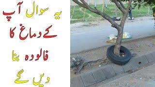 Top 10 Paradoxes That Will Blow Your Mind -  Hamza Javed