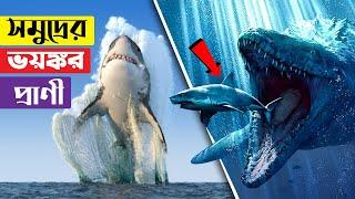 গভীর সমুদ্রের সবচেয়ে ভয়ঙ্কর ১০টি প্রাণী !! 10 Mysterious Deep Sea Creatures Caught on Camera