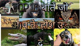 Top 10 questions for VET PAPER || Top General Knowledge