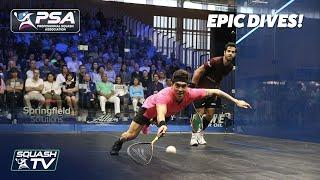 Squash: 10 EPIC DIVES from the PSA World Tour!