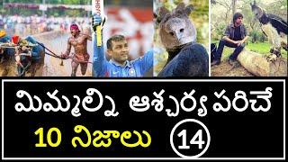 Top 10 Unknown Facts in Telugu | Interesting and Amazing Facts | Part 14 | Minute Stuff