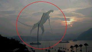 10 Scary Creatures Caught On Camera