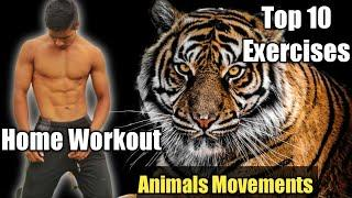 BEST Home Workout | Animal Movements /Animal Flow Exercise | Top 10 Exercise(NO EQUIPMENT!)