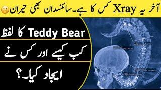 Most Amazing Facts in the World | Top 10 Facts in Urdu | World Fact tv