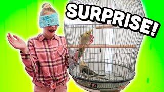 SURPRISE Birthday Birds!