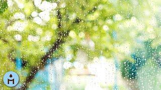Rain Sounds 10 Hours:The Sound of Rain Meditation,Autogenic Training,Deep Sleep,Relaxing Sounds ❀815