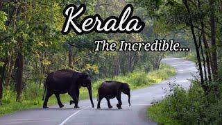 Top 10 Places To Visit In Kerala |Most Beautiful Place To Visit In Kerala |