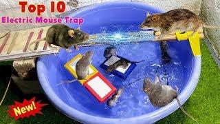 Top 10 Electric Water Mouse trap / Idea Homemade Electric Rat trap  2020 / Top 10 Electric Mice Trap