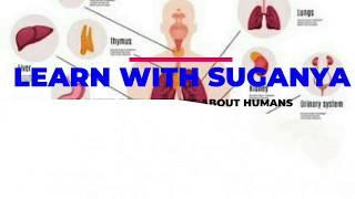 Top 10 interesting facts about Human Body Top 10 facts 