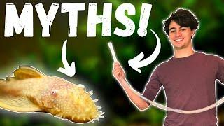 The WORST Fish Keeping MYTHS! Top 10 Aquarium LIES and MYTHS