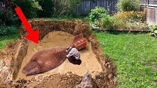 Top 11 CRAZIEST Things People Found In Their Backyard!