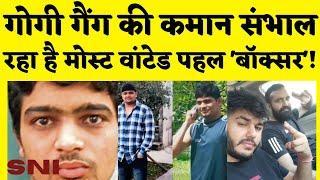 Rohini Court Shootout: Gogi Gang की कमान Most Wanted Pehal 'Boxer' के पास | Deepak Pehal | Rohit Moi