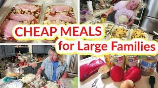 CHEAP MEALS for LARGE FAMILIES   10 Frugal FREEZER MEALS and 3 EASY Casserole Recipes!