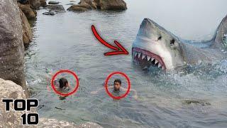 Top 10 Scary Shark Encounters