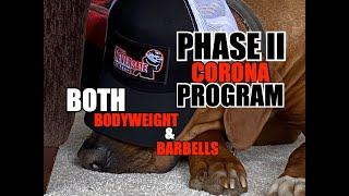 PHASE II: Corona Bodyweight AND/OR Barbell Programs - 9 Week Transitional  Progression