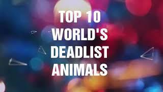 #Top10 Top 10 world s deadliest animals