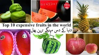 Top 10 most expensive fruits in the world 2020 | دنیا کے دس مہنگے ترین پھل | US RAINBOW