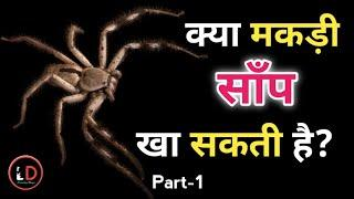 Spider Fact Part-1 | Top 10 Amazing facts Video in hindi | Interesting facts Video | Learning Dunya