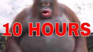 10 Hours of Uh Oh Stinky Poop