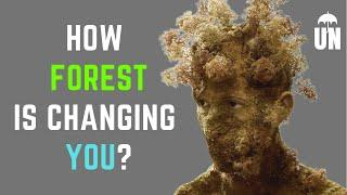 How Forest Brings Change in You ? | Top 10 Benefits of forest | International Day Of Forest 2020