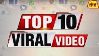 Viral News: Watch The Latest Top 10 Viral News Of The Day   March 14, 2020