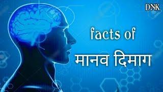 #humanbrain #DNKTECHNICAL  मानव दिमाग के कुछ रोचक तथ्य || top 10 fact of human brain