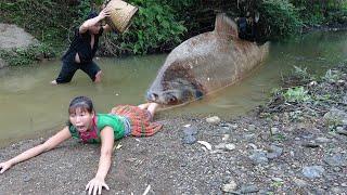 Primitive Life - Primitive Unique Hand Fishing Catch Big Fish For Survival