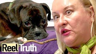 The Job Centre: Episode 2 | Full Documentary | Reel Truth