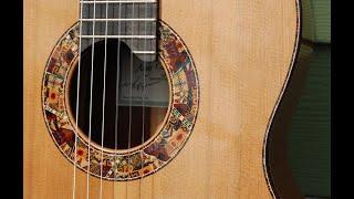 10 year guitar - Cedar/African Rosewood double top 2020