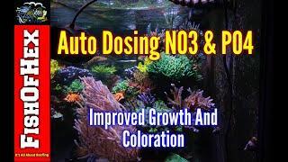 Auto Dosing NO3 & PO4 | Best Decision I Have Ever Made