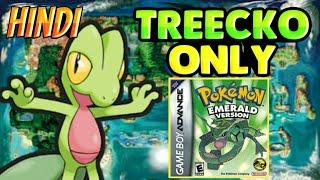Can You Beat Pokémon Emerald Only With Treecko|Pokémon Gameplay Challenge In Hindi|Pokemon Galaxy