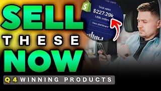 20 WINNING Q4 PRODUCTS!! (BEST Problem Solving & Trendy Products) | Shopify Dropshipping 2020
