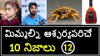 Top 10 Unknown Facts in Telugu | Interesting and Amazing Facts | Part 12 | Minute Stuff